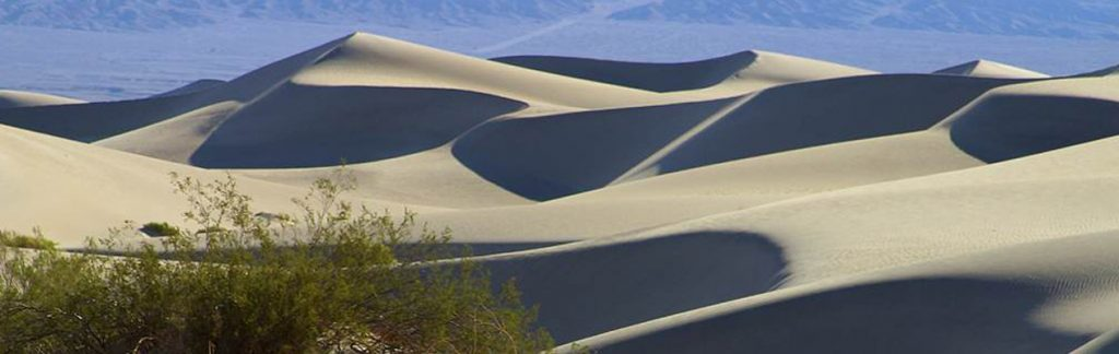 Landscape view of a sand dune