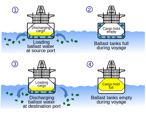 Ballast water diagram