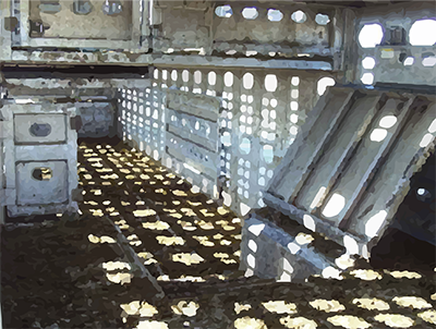 Inside view of a livestock truck