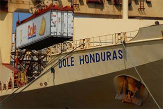 A reefer ship, Dole Honduras, unloading a container of bananas