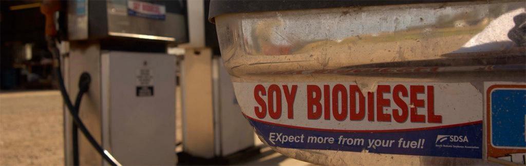 Soy biodiesel
