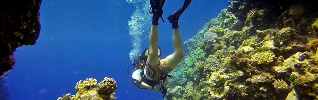 Diver in the ocean